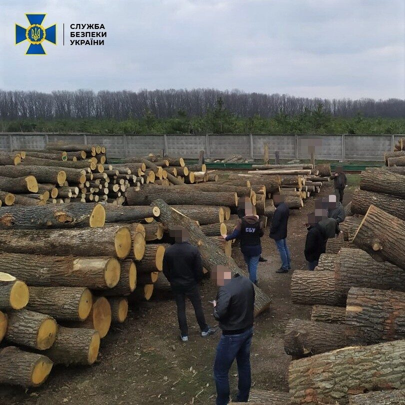 СБУ блокировала контрабанду древесины